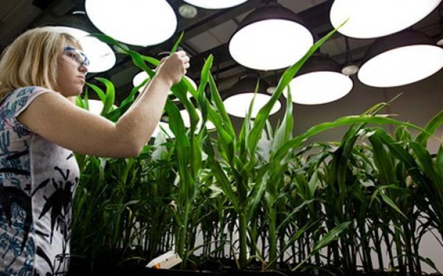 Însărcinatul cu afaceri al SUA, Dean Thompson, ne încurajază să investim în domeniul biotehnologiei