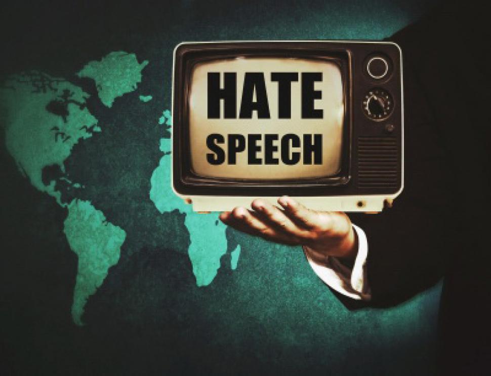 Primul Raport anual privind discursul instigator la ură din România (2014 - 2015)
