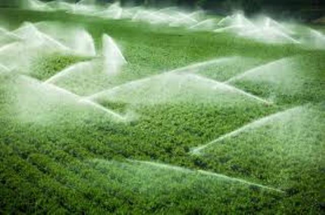 Experți americani și israelieni împărtășeșc bune practici pentru îmbunătățirea sistemului de irigații