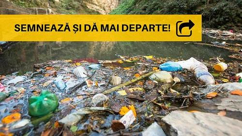 Apel pentru reguli mai stricte în producerea și reciclarea plasticului la nivelul Uniunii Europene
