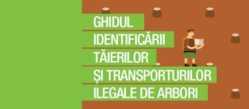 Greenpeace România te învață cum să verifici un transport de lemne