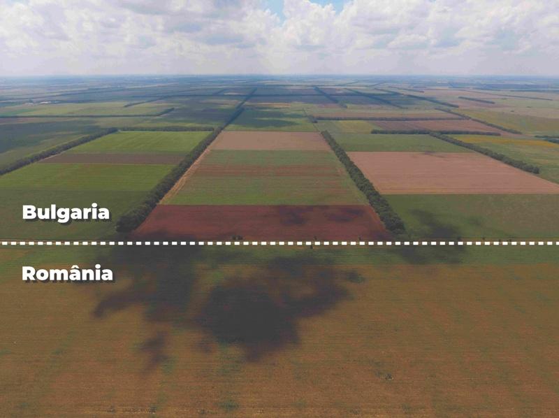 Tu știi cum au dispărut perdelele forestiere din țară?