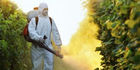 Lista neagră a pesticidelor din Uniunea Europeană: 209 dintre acestea pot reprezenta riscuri pentru sănătate și mediu
